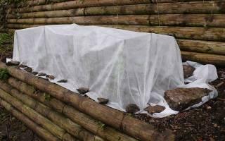 Подготовка роз к зиме на урале