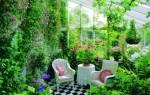 Оранжереи, зимние сады и теплицы – отличия
