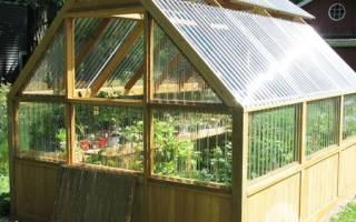 Как выбрать сотовый поликарбонат для теплиц на даче