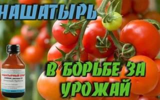 Аммиак для растений применение