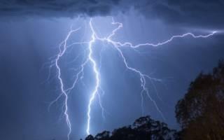 Теплые дожди и грозы – предвестники первых маслят