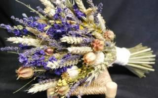 Какие цветы называют сухоцветами 20 ка самых популярных видов