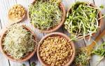 Чем полезна микрозелень