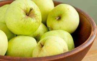 Прозрачные яблоки сорт фото