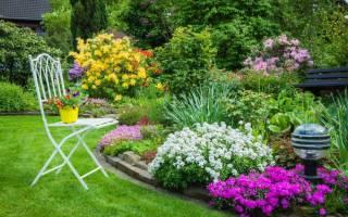 Как красиво расположить цветы на участке