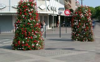Разновидности вертикальных клумб и цветы для них