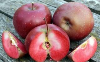Яблоко внутри розовое