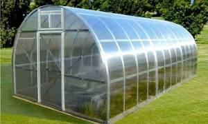 Преимущества выращивания клубники в теплице из поликарбоната