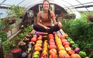 Сорта для выращивания в теплице